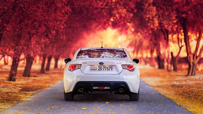 Natureza, Outono, Carro Subaru