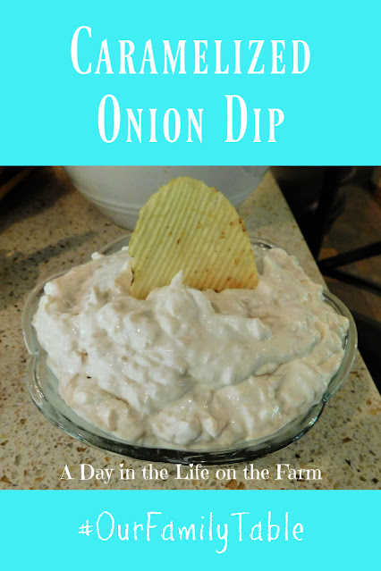 Caramelized Onion Chip Dip pin