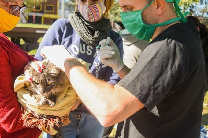 Salud Animal estará en Barrio Esperanza este martes y jueves