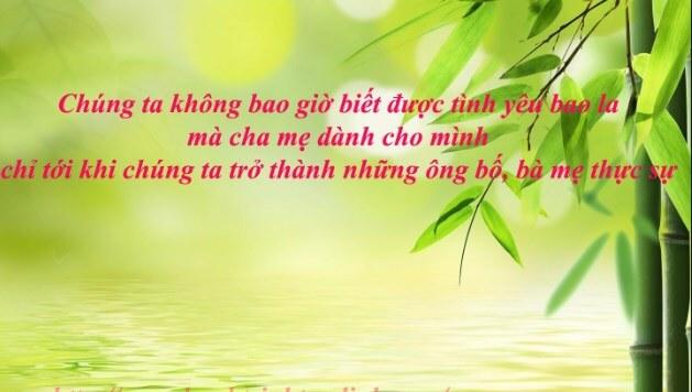 Thất tình Đà Nẵng, Da Nang that tinh