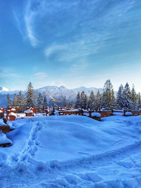 panorama Tatr, widok na szczyty,  śnieg, las, Gubałówka