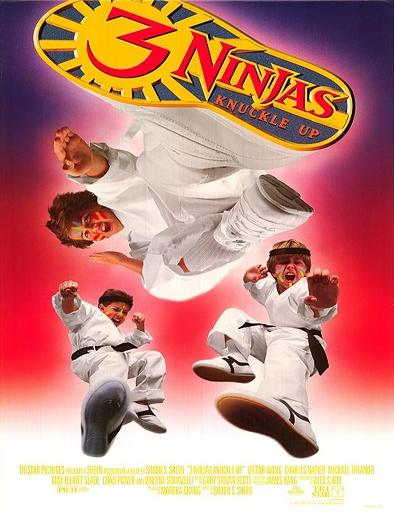 Ver Tres pequeños ninjas 3 (1995) Online