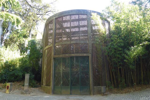 Estufa Fria -  Jardim Botânico da UC