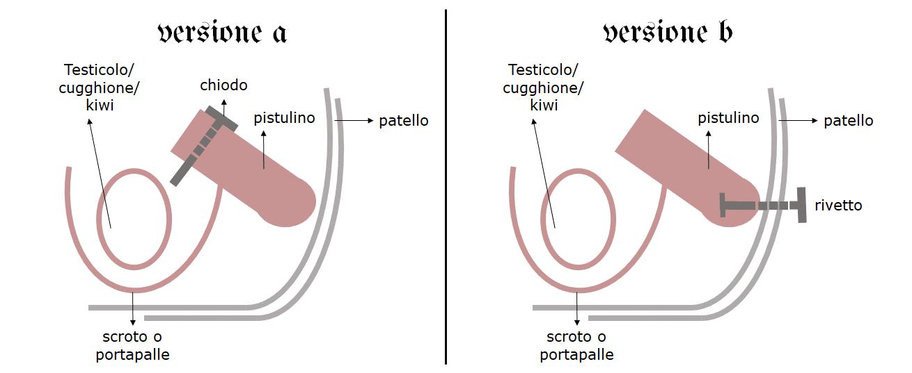 Il progetto per appendere il pene al chiodo, in duplice versione, finemente illustrata. Clicca sull'immagine per ingrandirla.