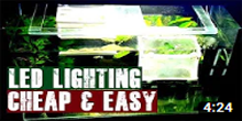 Install cheap LED Aquarium Lighting
