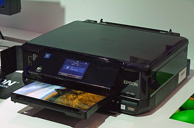epson expression 800 xp driver
