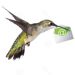 https://mailchi.mp/ff21458a85dd/qkvaulymb2-1599737?e=[UNIQID]