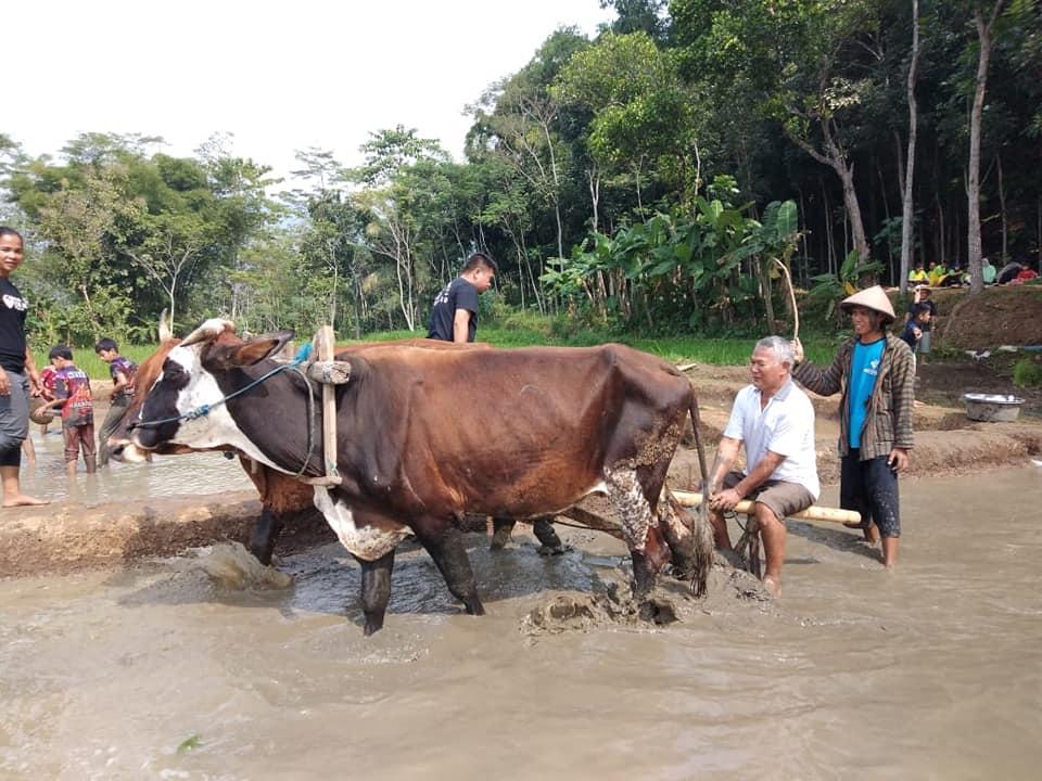 Desa Karangrejo Magelang