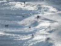sopela surf 09