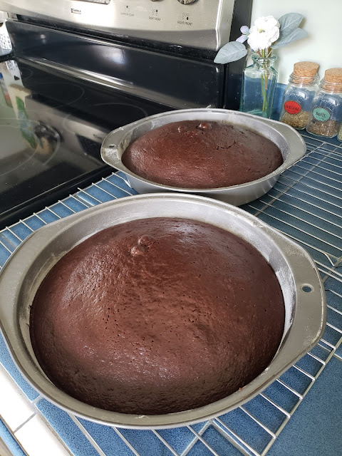 cakes cooling in pans