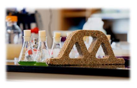 شاهد بالفيديو.. تطوير مواد بناء من خلايا حية ولديها القدرة على التكاثر!