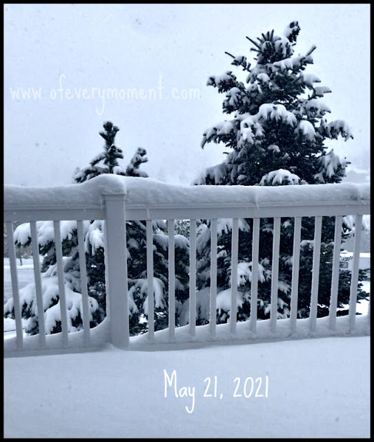 A snowy scene, dated May 21st.