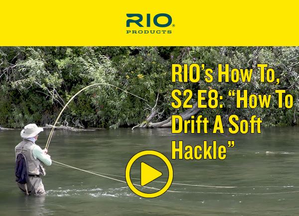 71398d511c7ac It s hard to find a more versatile and effective fly for a trout stream  than a soft hackle. I usually tight line swing soft hackle flies but in  this video ...