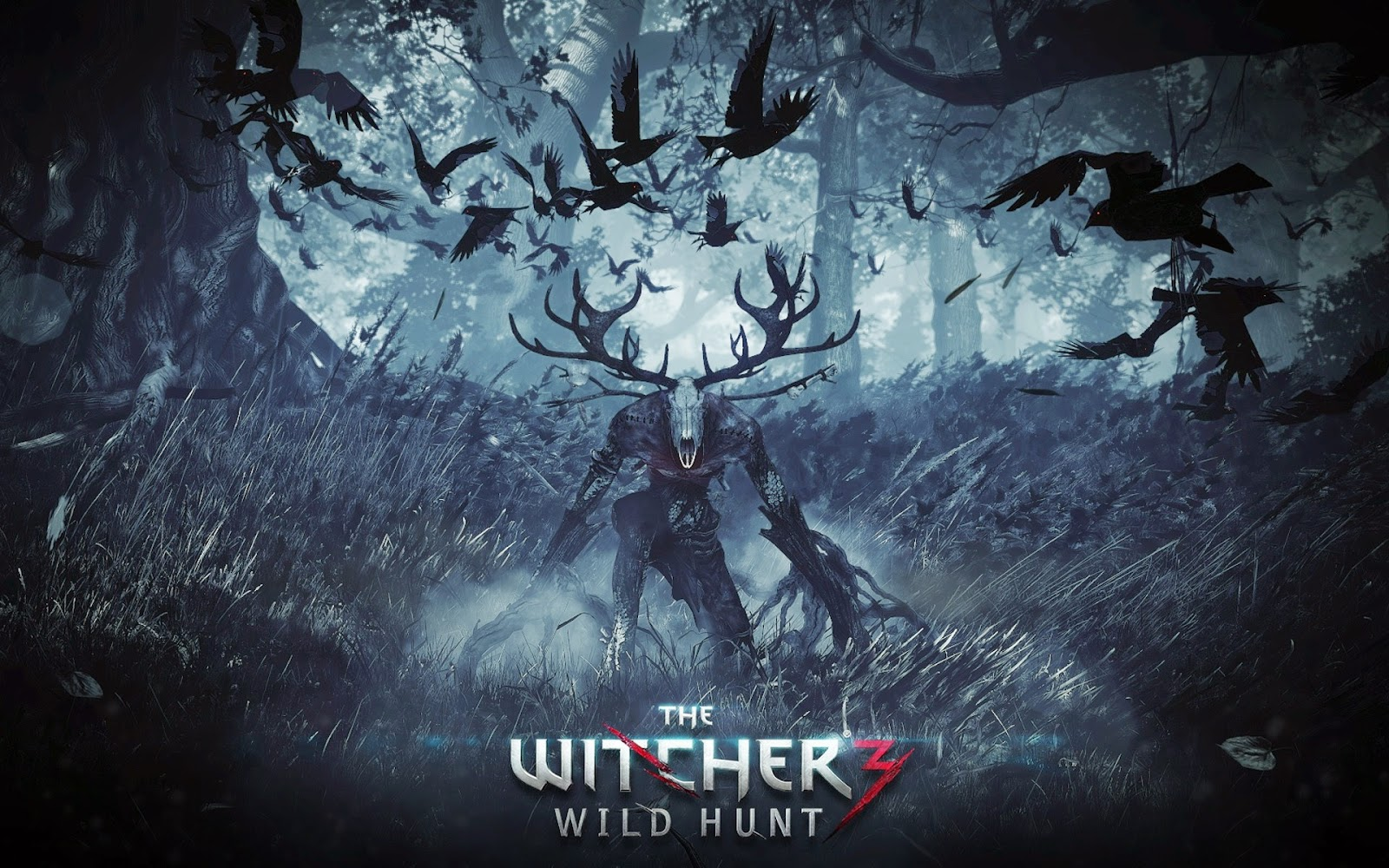 The Witcher 3 : Wild Hunt wallpaper