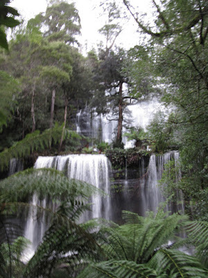Cascada Russell. Mount Field, Tasmania