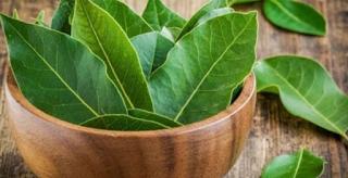 Ζέστη και κατσαρίδες. Τρεις φυσικοί τρόποι για να τις εξαφανίσετε από το σπίτι σας
