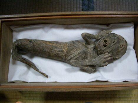 mumi putri duyung yang paling menyeramkan dan mengerikan di dunia-7