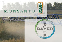 Monsanto, Bayer, Transgenicos, OMG,