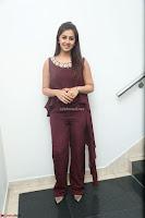 Nikki Galrani in a Brown Shining Sleeveless Gown at Nakshatram music launch ~  Exclusive 105.JPG