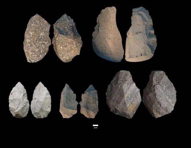 Smallest Homo erectus cranium in Africa and diverse stone tools found at Gona, Ethiopia