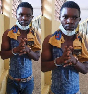 NEWS: Salesman arrested for defiling his employer's twin daughters left in his care (photo)