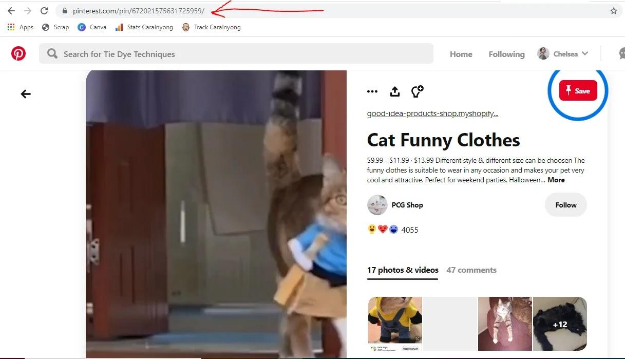 Cara Download Gambar Dan Video Di Pinterest Hp Pc Laptop Bahas Android