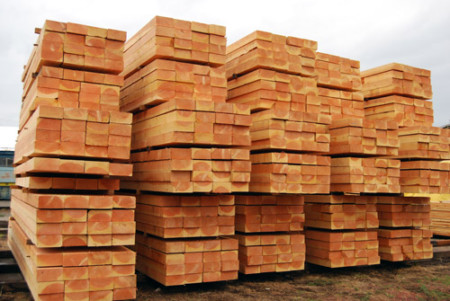nhập khẩu gỗ xẻ từ cây linh sam canada