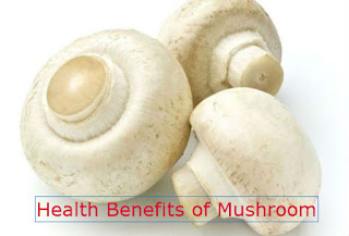 Mushroom and its Health Benefits