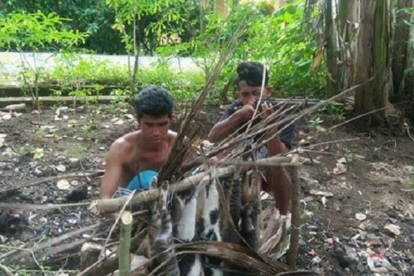 Astaghfirullah, Pemuda ini Tega Bantai Kucing Lalu Mau Dibakar Untuk Pesta