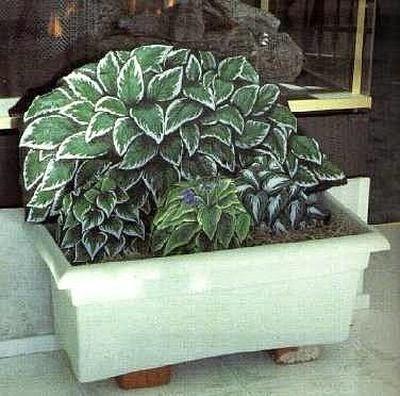 piedras, rocas, decoración, pintura, Tutorial de Artesanía, plantas