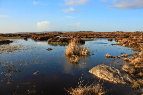 Instead of contradicting the biblical timeline and the Noachian Flood, peat bogs actually present a much younger earth than many uniformitarian methods indicate.