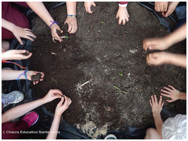 Investigando el suelo-- Chacra Educativa Sta. Lucía