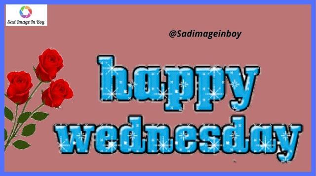 Happy Wednesday images | happy memes, wednesday cat meme, happy wednesday memes, wednesday quotes images