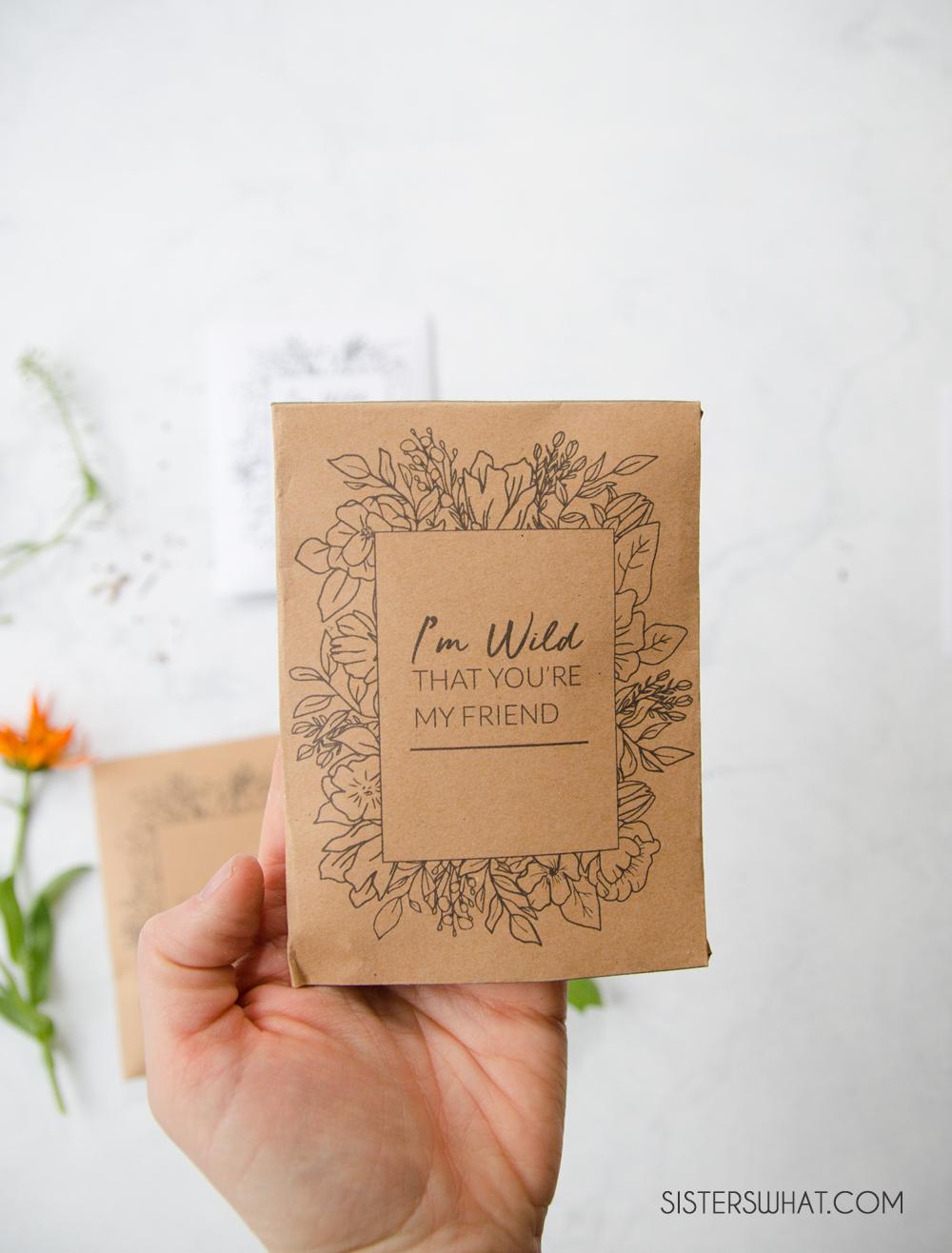 printable valentine seed packet