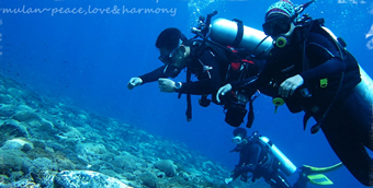 SCUBA DIVING POSTS - CLICK BELOW