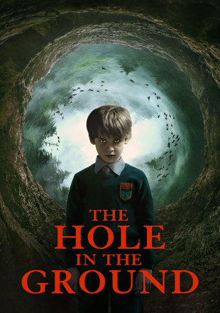 The Hole in the Ground 2019 BRRip 720p Dual Audio
