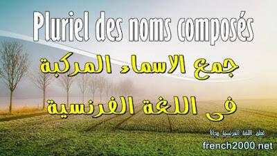 جمع الاسماء المركبة فى اللغة الفرنسية