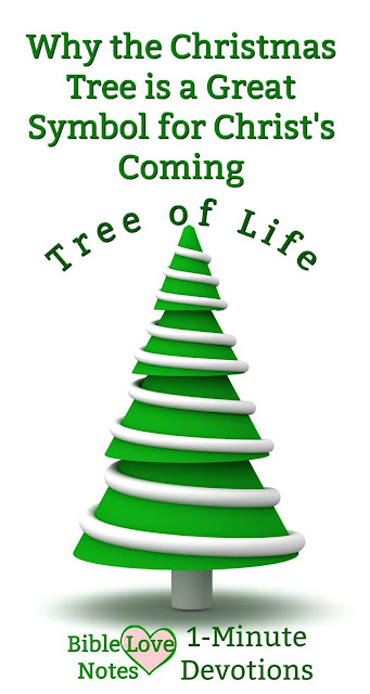 There's lots of false information circulating about the symbolism of Christmas trees. This 1-minute devotion explains their scriptural significance. #ChristmasTrees #Christmas #BibleLoveNotes #Bible #Devotions