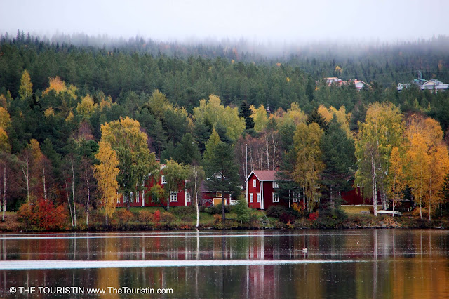 Red wooden houses in a forest on the shore of a lake under an overcast sky with low hanging clouds.