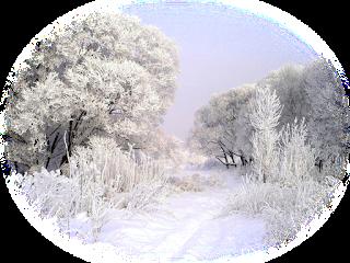 Идет красавица зима