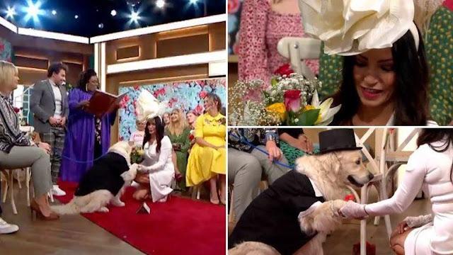 मॉडल ने टीवी पर लाइव अपने पालतू कुत्ते से की शादी - newsonfloor.com