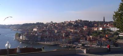 Widok na dzielnicę Porto Ribeira z Vila Nowa de Gaia