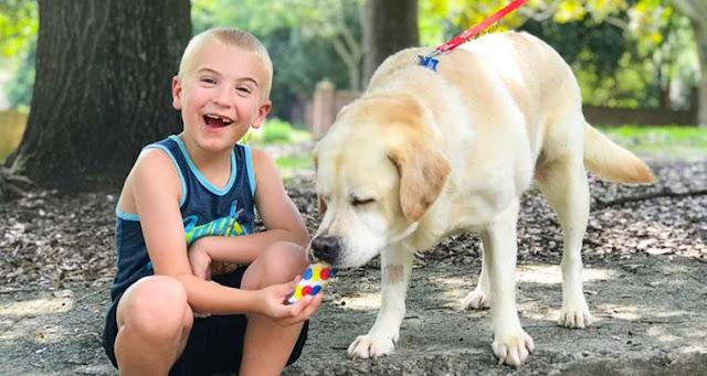 7-летний мальчик с добрым сердцем, спас уже более 1300 собак