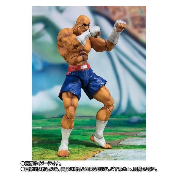 https://www.biginjap.com/en/pvc-figures/22947-street-fighter-v-sh-figuarts-sagat.html
