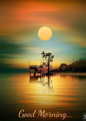 beautiful good morning nature images