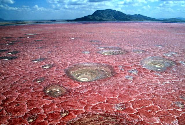 Natron red lake