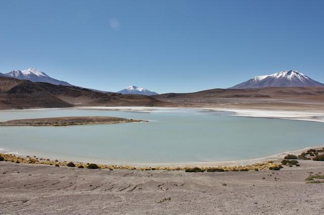 Perrengues na Bolívia