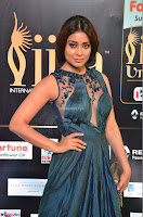 Shriya Saran in Beautiful Transparent Dark Gown IIFA Utsavam Awards 2017 056.JPG