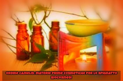 materie prime cosmetiche per lo spignatto, ingredienti cosmetici, teoria dello spignatto