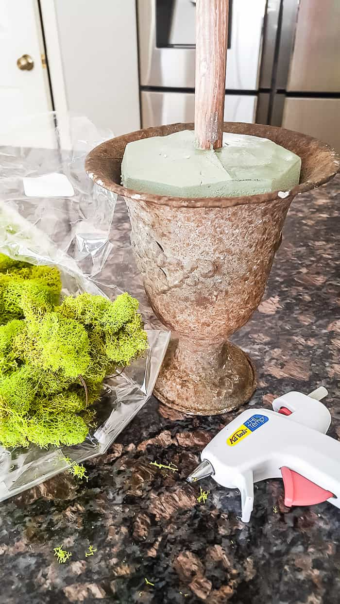 reindeer moss to add to topiary urn